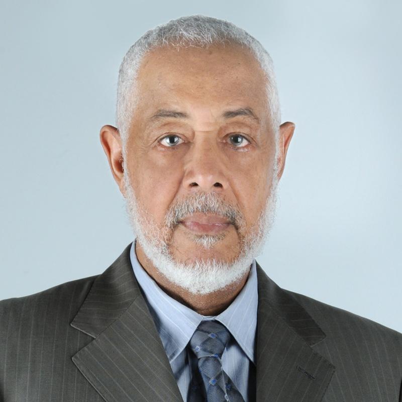 Ali Al Harthi